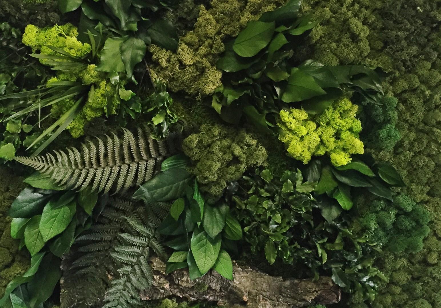 verde verticale 2